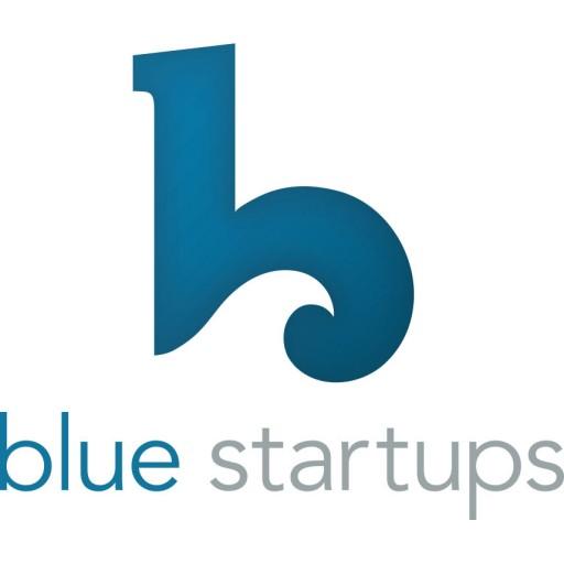 cropped-bluestartups-logo-1.jpg